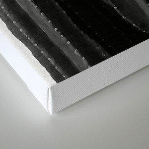 Cactus Black & White Canvas Print