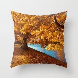 Perfect Autumn (Color) Throw Pillow
