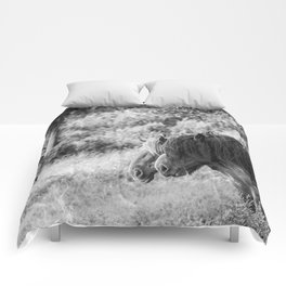 Pair of horses Comforters