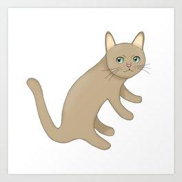 Caramel Colored Cat Art Print