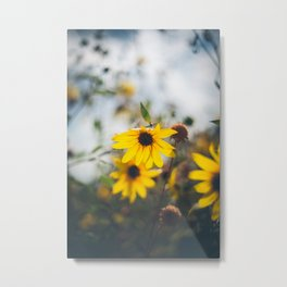 Sunflowers ll Metal Print