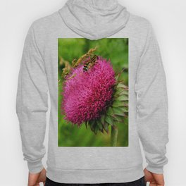 The thistle and a fly Hoody