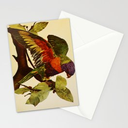 Blue Mountain Lory psittacus swainsonii11 Stationery Cards