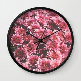 Chrysanthemum Autumn Flowers Photography Wall Clock
