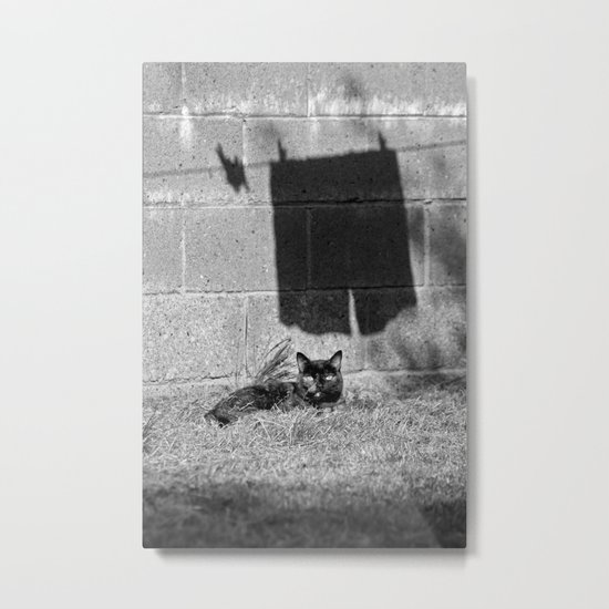 The cat and the pants Metal Print