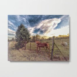 Horses of Cullman County Metal Print