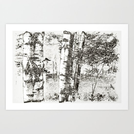 North Woods Sketch Art Print