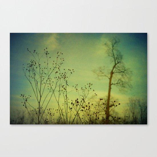 Fleeting Moment Canvas Print