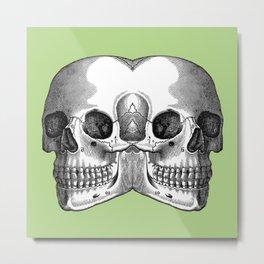 Double Trouble / PASTEL GREEN Metal Print
