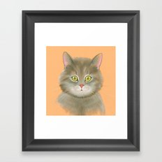 Gray kitty. Framed Art Print