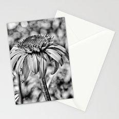 La Fleur au Soleil Stationery Cards