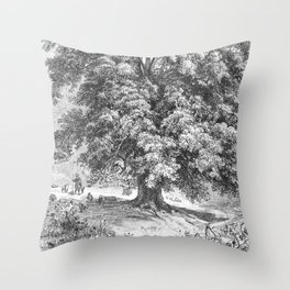 Linden Tree Print from 1800's Encyclopedia Throw Pillow