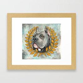 Cane Corso dog Framed Art Print