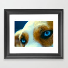 Zoeys eye's Framed Art Print
