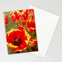 Tulip Gardens Stationery Cards