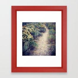 September Path Framed Art Print