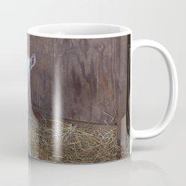 Toggenburg Goat Coffee Mug