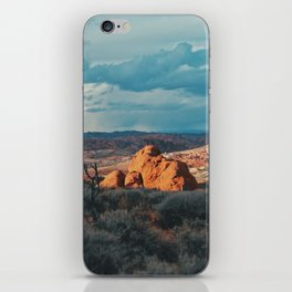 Colors of the Wilderness iPhone Skin