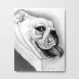 The English Bull Dog Metal Print