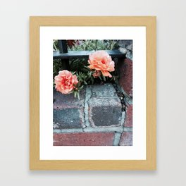 Flowers and Brick Framed Art Print