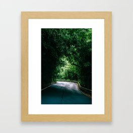 Driving the Hana Highway Framed Art Print