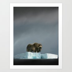 Muskox Chillin' on an Iceberg Art Print