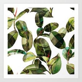 Botanical Collection 01-1 Art Print