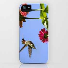 Hummingbird Happiness iPhone Case