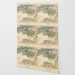 Vintage Map of the Coal Fields of South Wales - Forest Of Dean - Bristol and Somersetshire Wallpaper