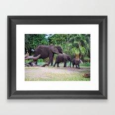 Elephant Walk - Safari Framed Art Print