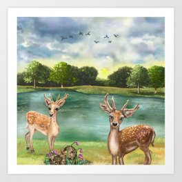 Quizzical Deer By Lake Art Print