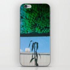 Realm iPhone & iPod Skin