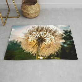 Shaded By The Dandelion Rug