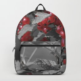Redcurrant Backpack