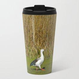 Andean goose (Chloephaga melanoptera) Travel Mug
