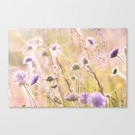 Purple Wildflowers 2 Canvas Print