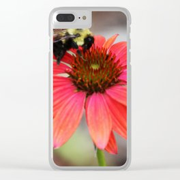 Bumble Bee On Coneflower Clear iPhone Case