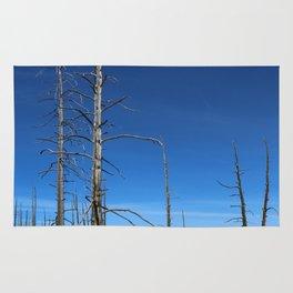 Lodgepole Pines In Geyser Basin Rug
