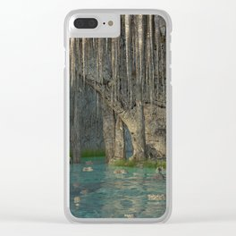 Water Cave Clear iPhone Case