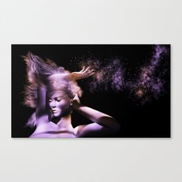 Scatter II Canvas Print