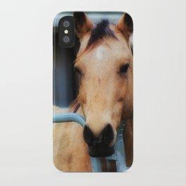Sweet Meadow Farm Horse iPhone Case