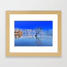 That Wanaka Tree Framed Art Print