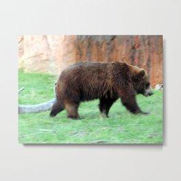 Bear in a Blur Metal Print