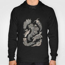 Ernst Haeckel Nudibranch Sea Slugs Monochrome Silver Hoody