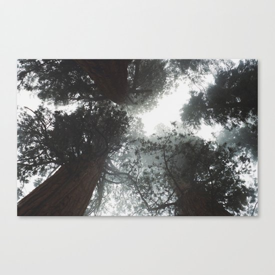 Dont look up Canvas Print