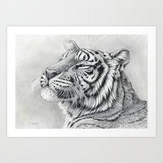 Pleased Tiger G014 Art Print