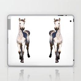 FOAL Laptop & iPad Skin