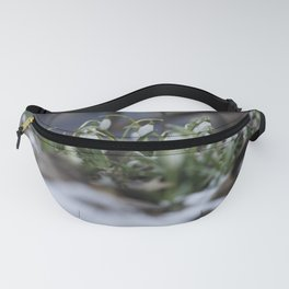 snow drop flowers - a sign of spring Fanny Pack