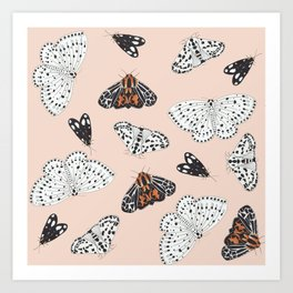 Muted Illustrated Moth Pattern Art Print