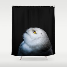 Winter White Snowy Owl Shower Curtain